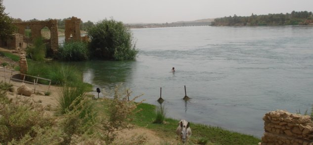 Kid swimming in Euphrates