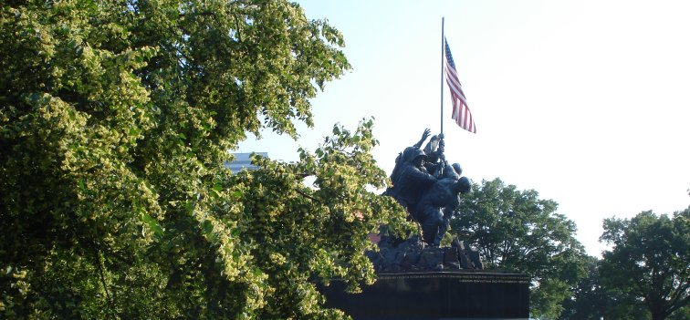 Liden trees at Iwo Jima Memorial