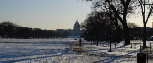 Capitol in the morning on March 2, 2009