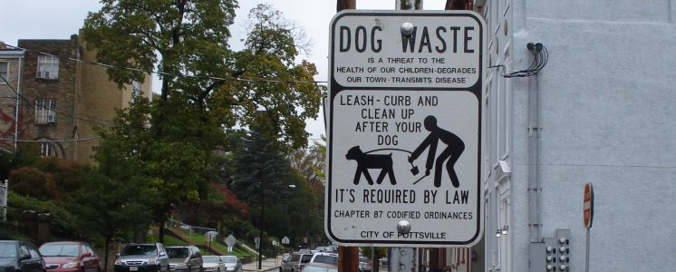 Sign re dogs in Pottsville, PA