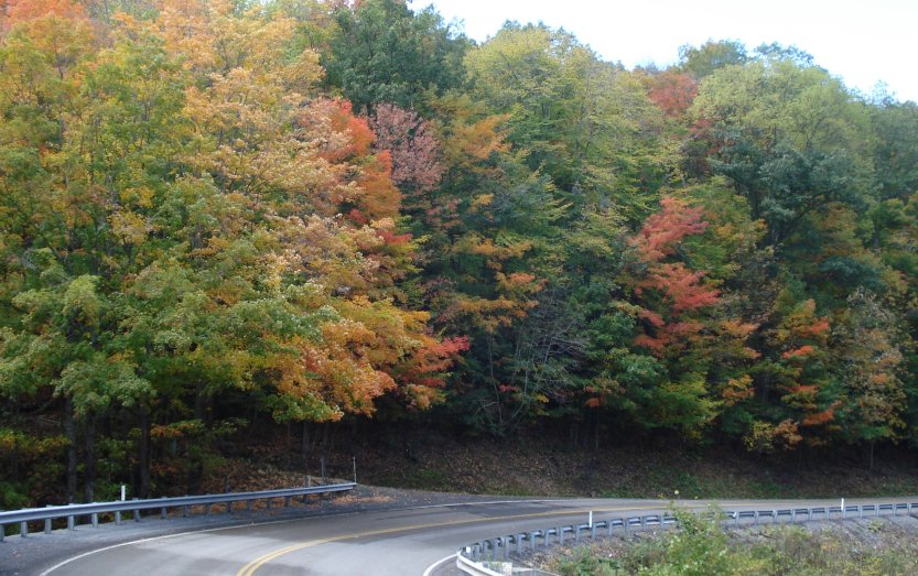 Changing leaves along US 50 in West Virginia on September 29, 2009