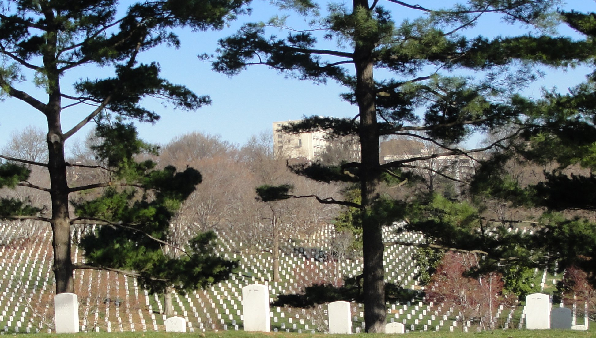Arlington Cemetary on March 18, 2010