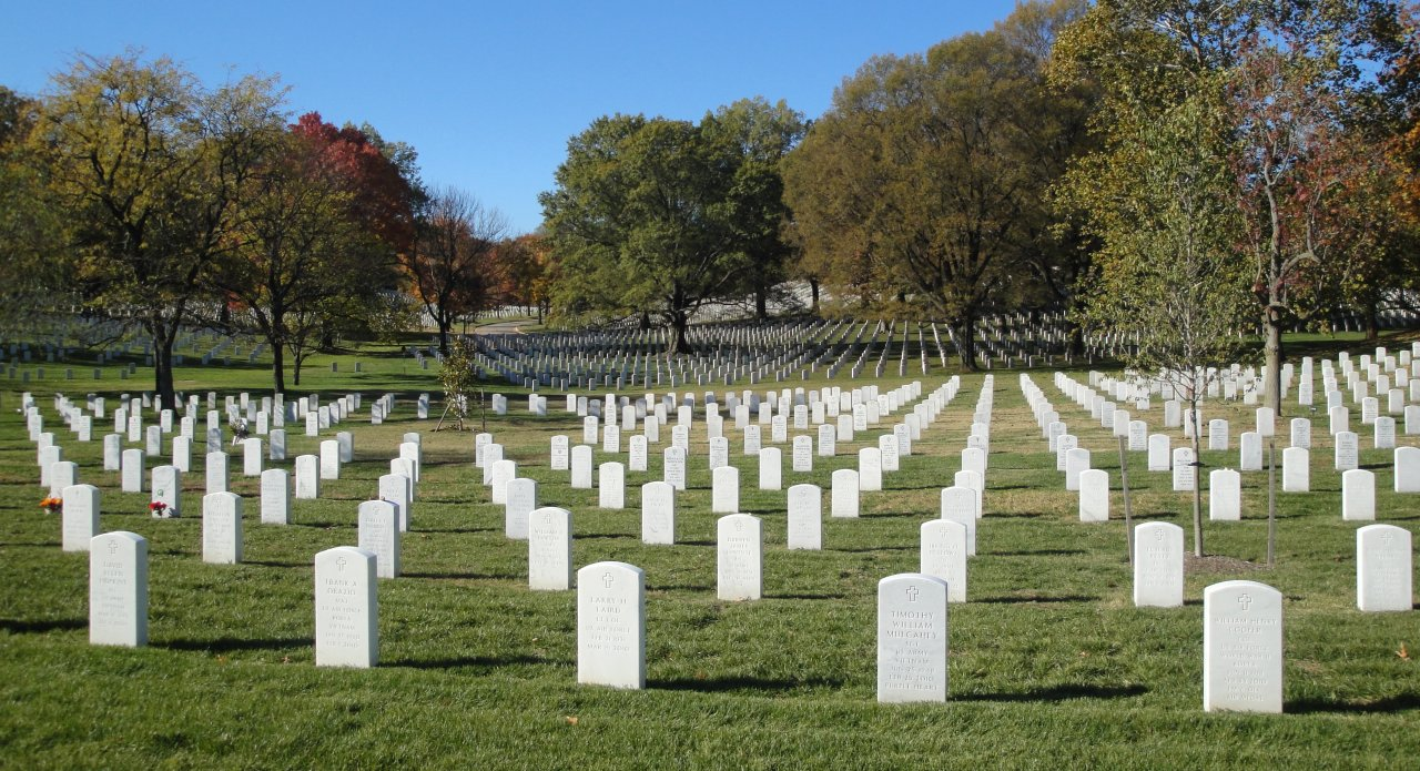 Arlington Cemetery on Veteran's Day