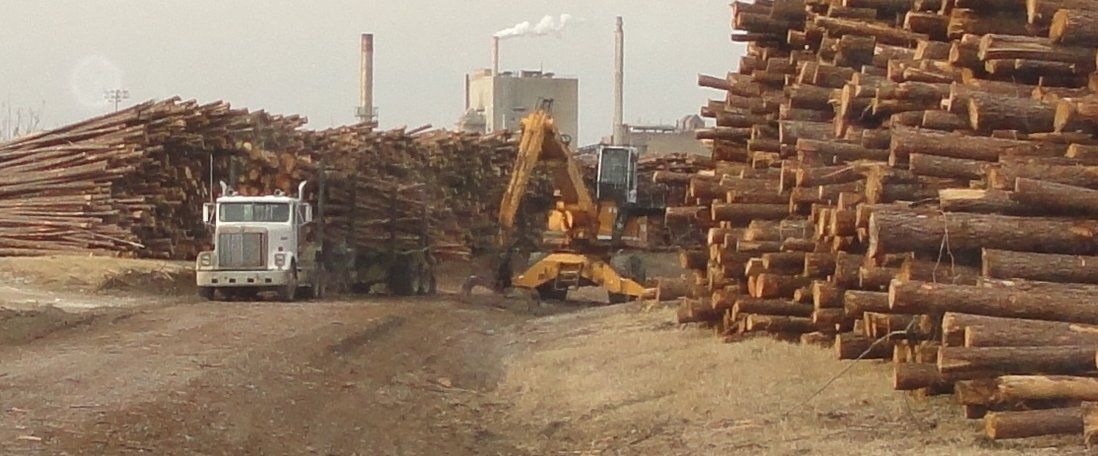 Truck picking up pulp wood at KapStone in NC