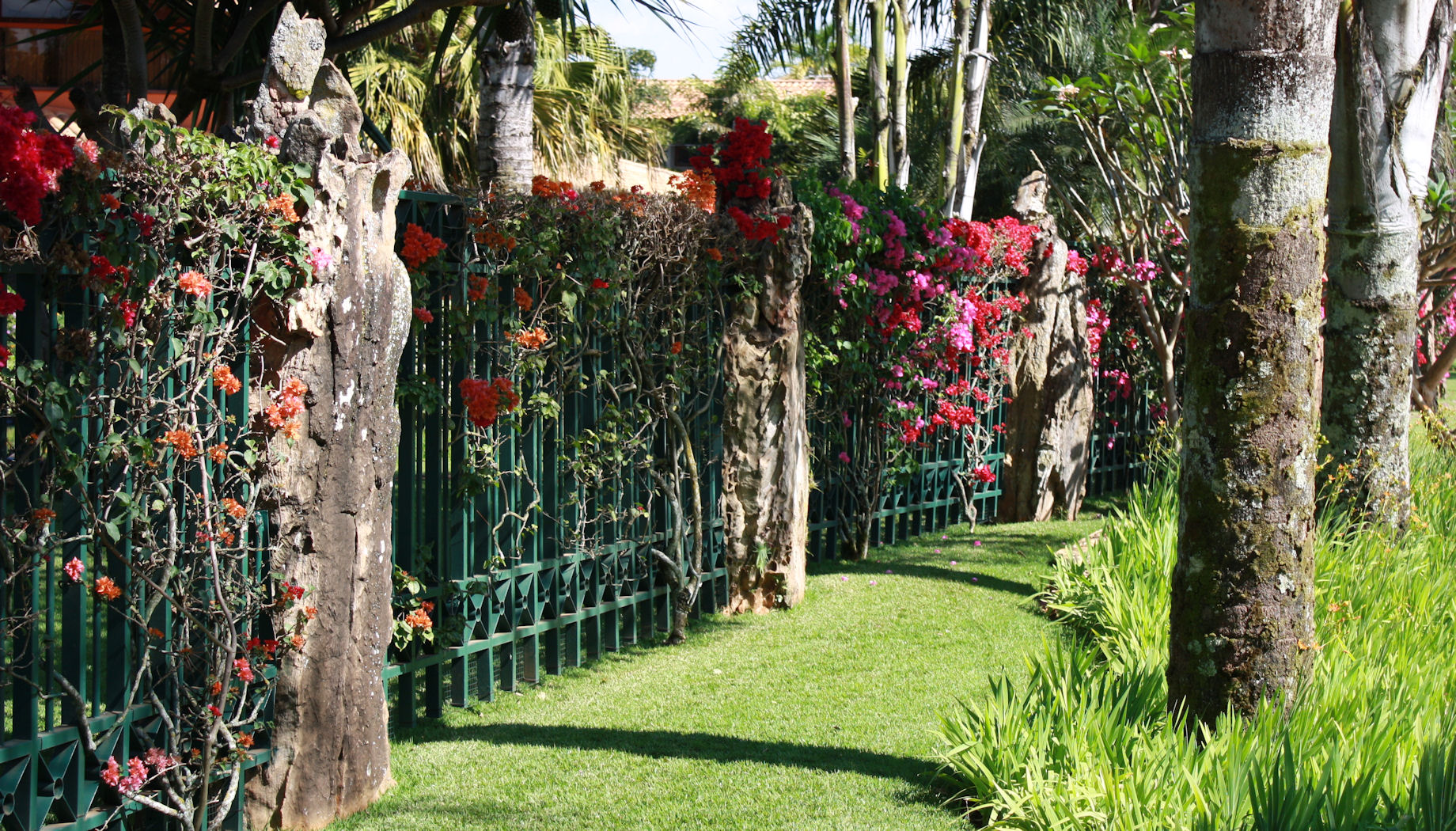 Ornate_fence_in_Brasilia_Lago_Sul.jpg