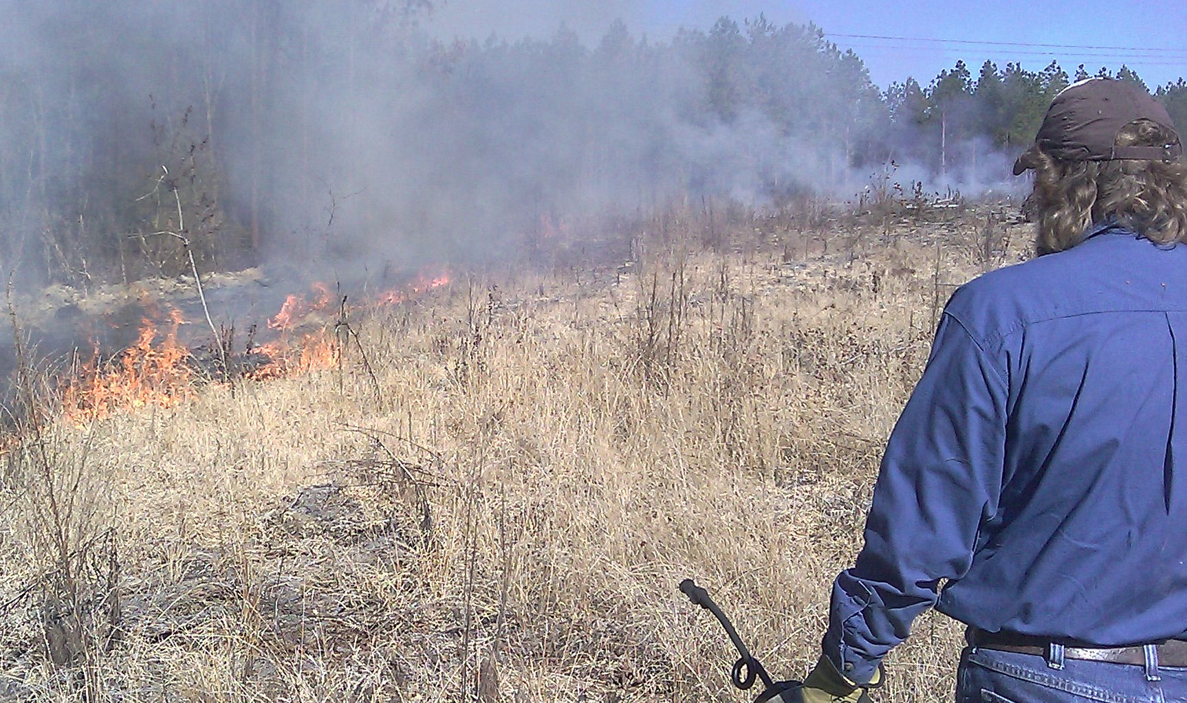 Setting forestry fires